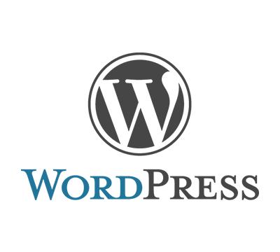 طراحی وب با وردپرس